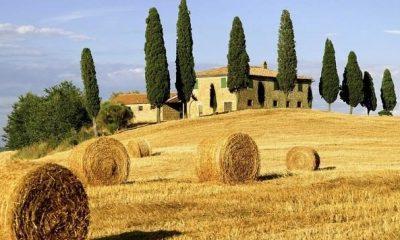 italian culture courses